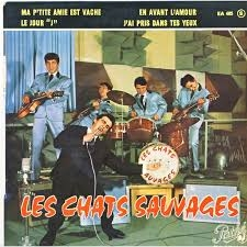 z6839chatsauvages.jpg