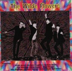 z10506wildeflowers.jpg